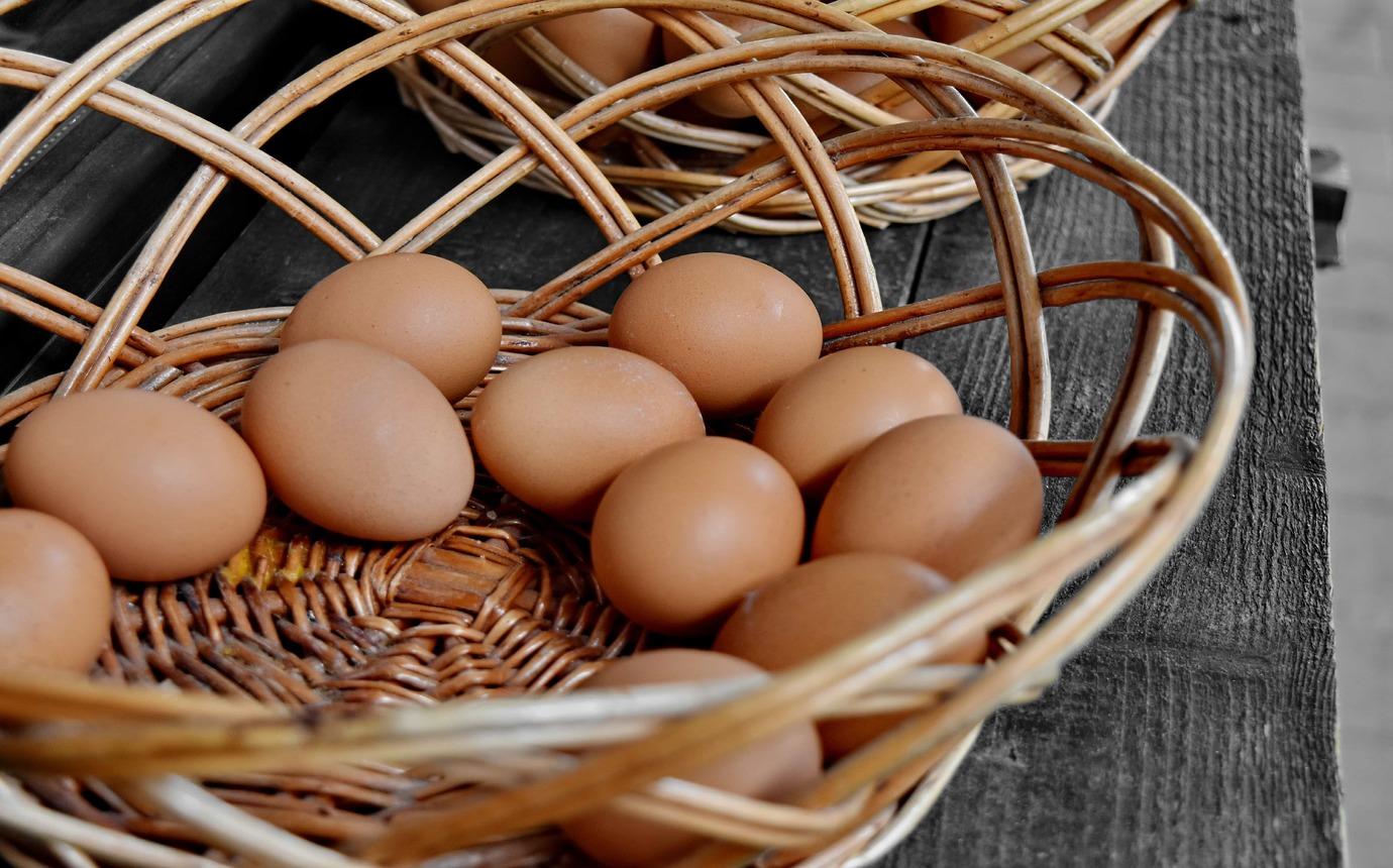 Si può mangiare un uovo al giorno?
